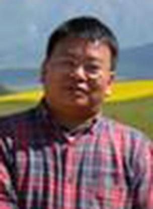 杨明波  教授